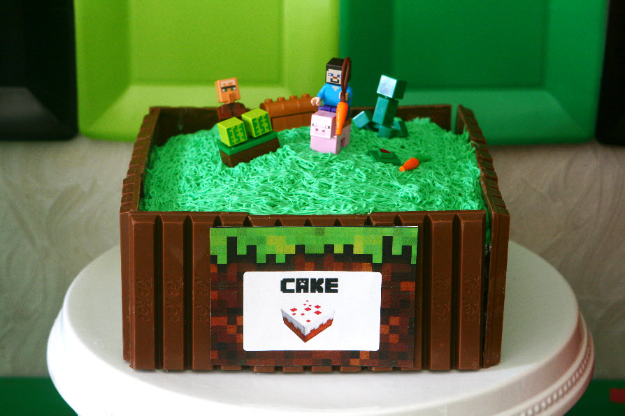 Minecraft Decoration Ideas For Birthday from www.ourlifeisbeautiful.com